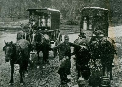 Milk carts at Albion Park c.1913 Town and Country Journal.