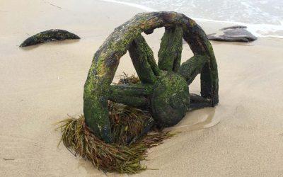 Windang Island Wheels